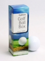Digiboard Golf Ball Box 110/fp